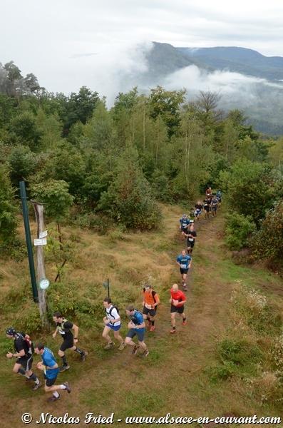 Trail du Haut-Koenigsbourg 2013