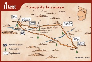 trace treg