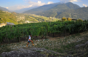 Valtellina Wine Trail 2013