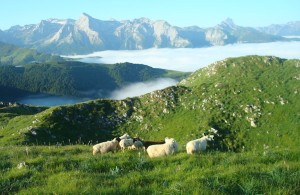 Grand Trail de la Vallée d'Ossau 2014