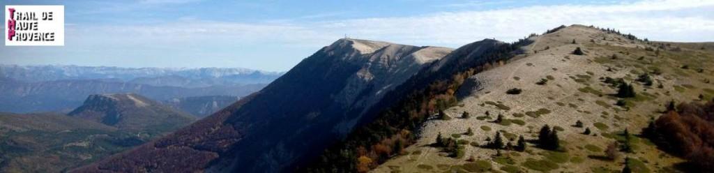 Trail de Haute Provence 2014