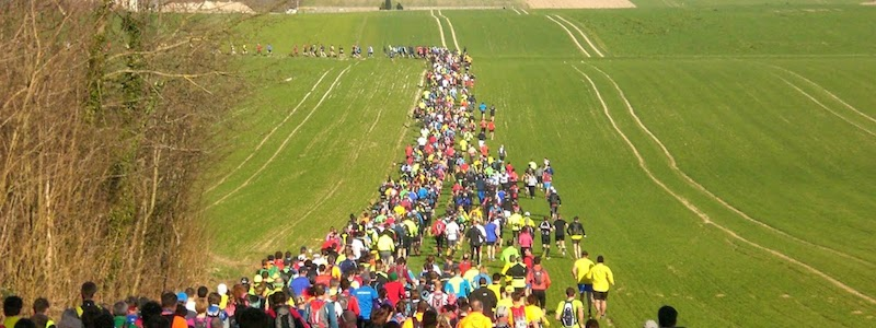 Trail de la montagne de Reims 2014