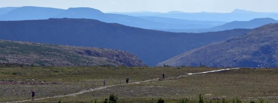 Ultra Trail du Mont Albert 2014, paysage de Gaspesie
