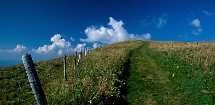 Paysages Trail du bucheron 2014