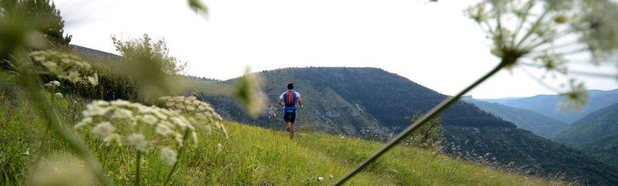 Lozere Trail 2014
