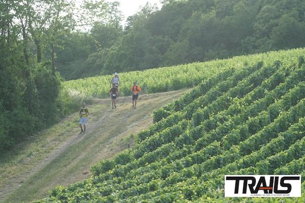 Trail de Sancerre 2014 - Herve Legac 5