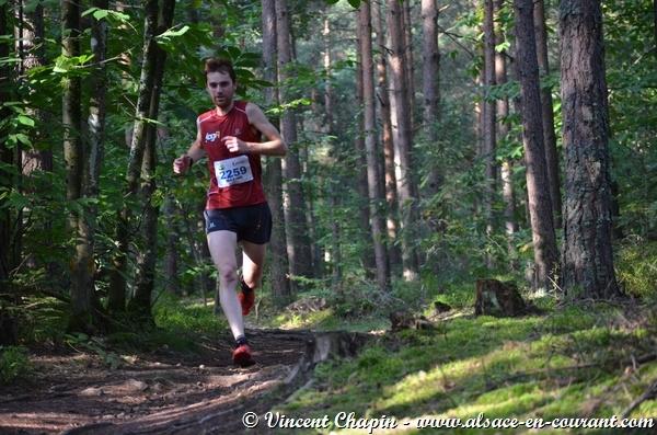 Trail du Haut Koenigsbourg 2014 - 10