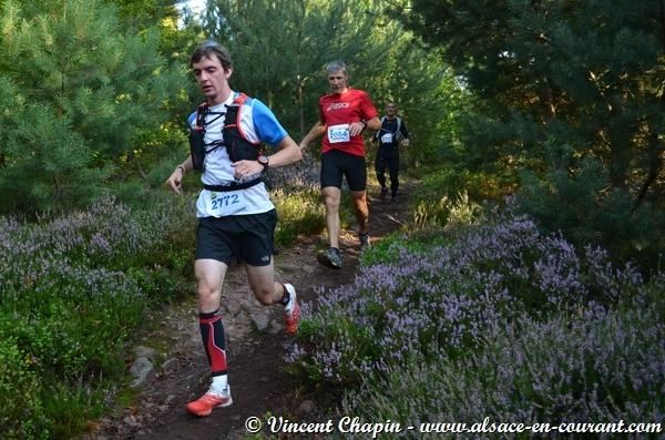 Trail du Haut Koenigsbourg 2014 - 9