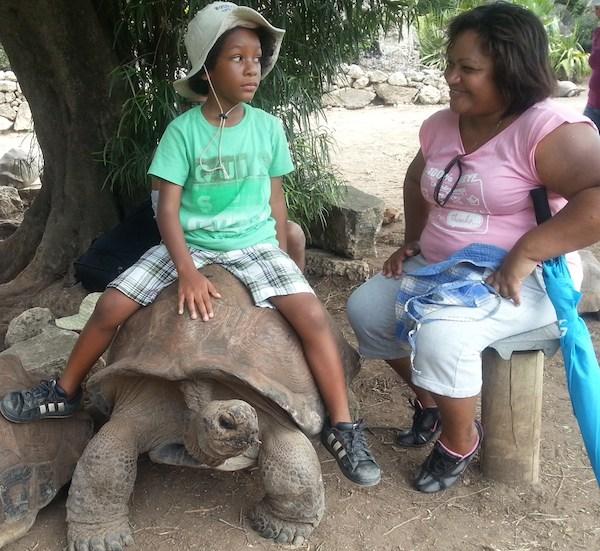 Ile de Rodrigues et ses tortues geantes