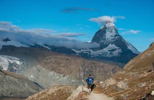 Ultra Trail du Mont Rose 2015