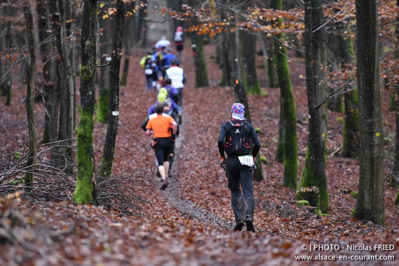 Trail des Brosses 2014