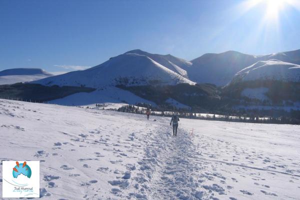 Trail hivernal du Sancy 2015