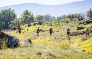 Grand Trail du Saint Jacques 2015
