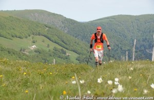 Trophée des Vosges et Trail Tour Alsace, Challenges Trail de l'Est