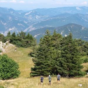Ultra-Tour-de-la-Motte-Chalancon-en-Drome-Provencale les 23 & 24 juillet 2016