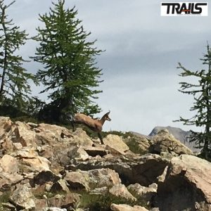 Grand Raid des Pyrenees