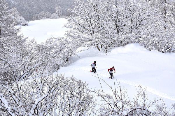 Ubaye Snow Trail Salomon photo JMK Consult