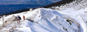 Ergysport Trail du Ventoux 2020